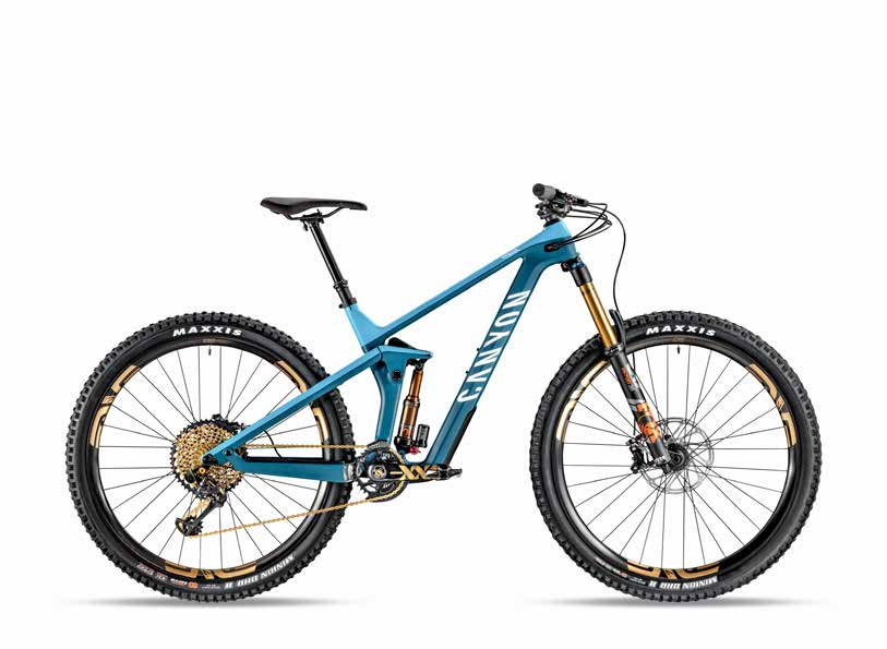 canyon strive 29